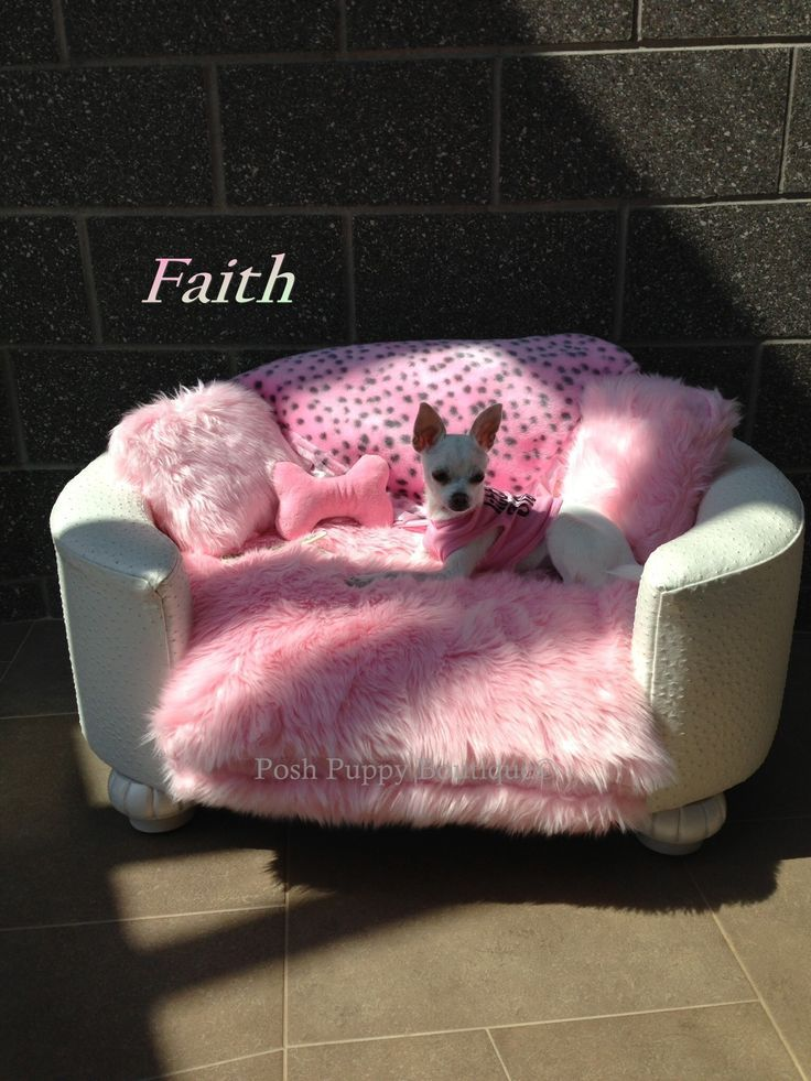 http://www.poshpuppyboutique.com/Luxury_Dog_Beds_s/1219.htm