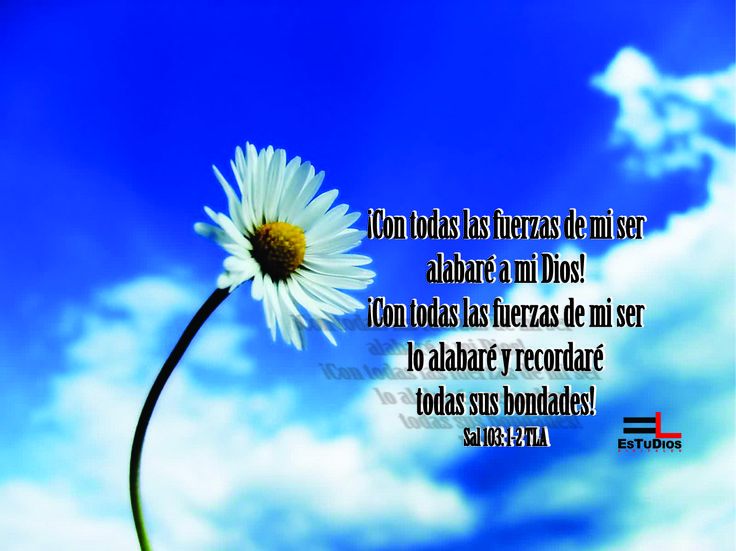 ¡Con todas las fuerzas de mi ser alabaré a mi Dios! ¡Con todas las fuerzas de mi ser lo alabaré y recordaré todas sus bondades! Sal 103: 1-2