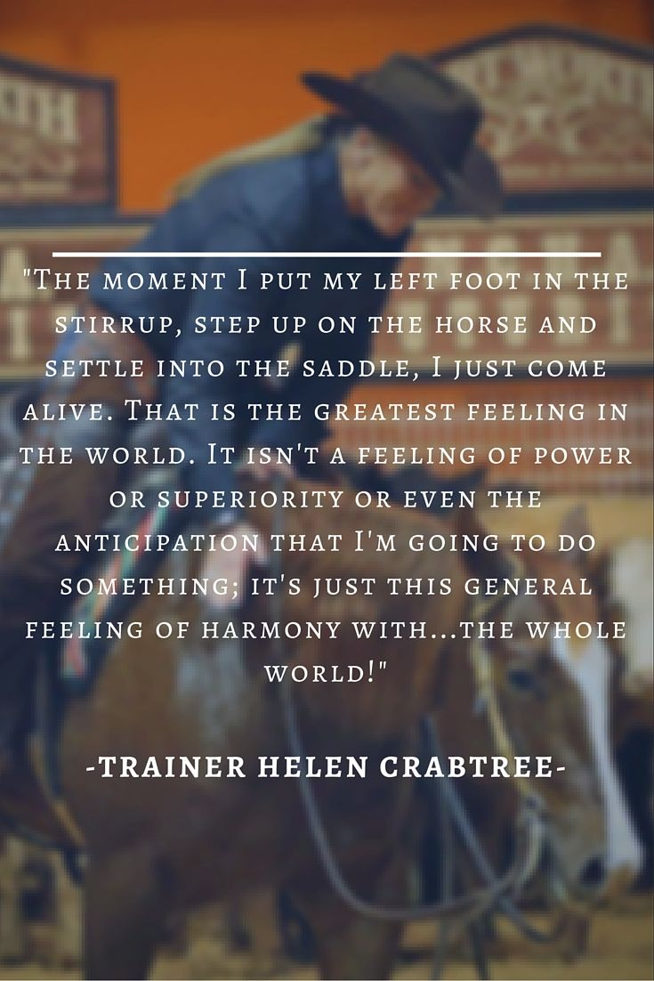 Here at AQHA, we couldn't agree more. There's nothing else like the feeling that comes from #horseriding, especially when you get to ride an American Quarter Horse. Pin if you agree! #AQHAProud