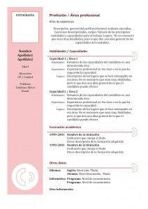 Plantilla de Currículum Vitae Funcional - Modelo 3