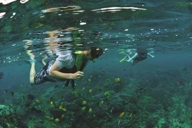 Snorkeling (Lembongan Island)
