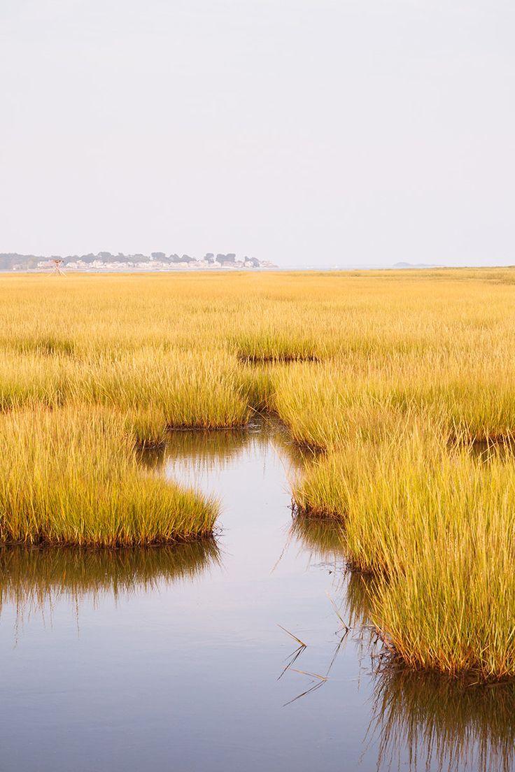 Yellow Oversized Coastal Wall Art Coastal Art Print Etsy Landscape Photography Landscape Nature Photography