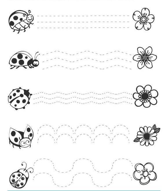 ladybug trace line worksheets (1)
