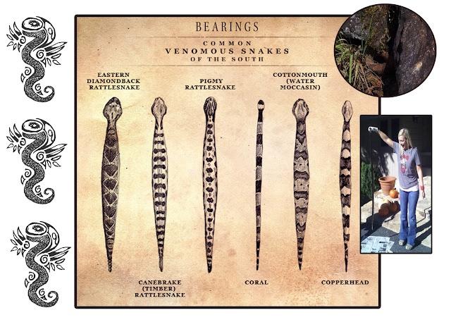... Snakes Identification, Snakebitejpg 16001143, Snakes Bites Jpg 1 600 1