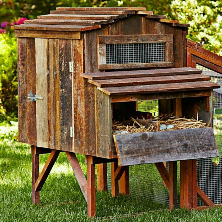 Chicken coop idea, LIKE THE DROP OPEN EGG GATHERING.