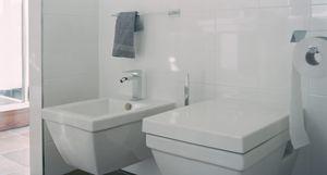 De keuze in toiletten is groot. Helemaal luxe wordt het natuurlijk als u deze combineert met een bidet.
