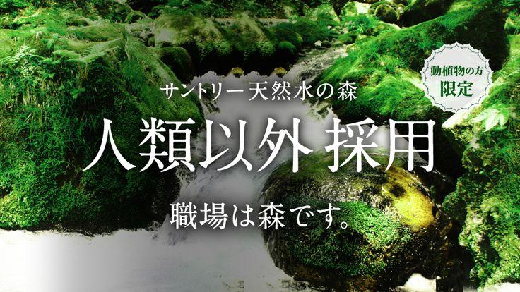 サントリー天然水の森「人類以外採用」