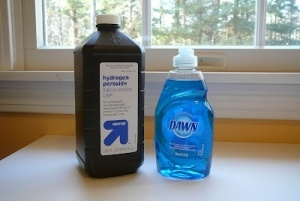 One part Dawn and two parts hydrogen peroxide stain remover: This is amazing!  I just removed a week old red wine stain from a light corduroy jacket as well as coffee stain from carpet.