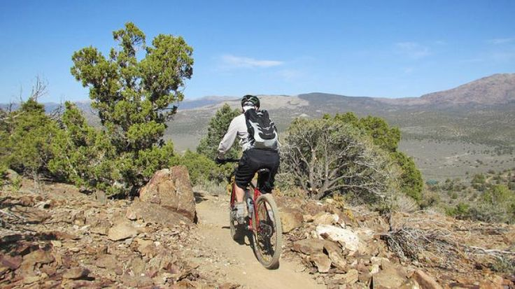 If you're in the Carson City area and looking to get in a quick mountain bike ride, you should add the newly constructed Pinyon Trail to your list.