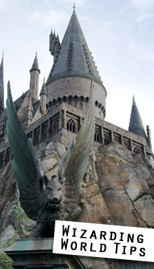 Wizarding World of Harry Potter Tips!