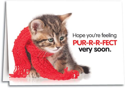 Get Well Soon Kitten Card Feel pur-r-r-fect soon kitty ...