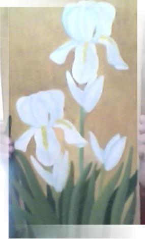 lirios blancos en el jardin        oleo sobre tela