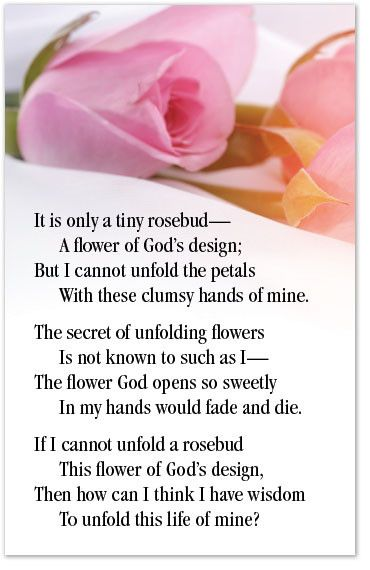 It is only a tiny rosebud— A flower of God's design; But I cannot unfold the petals With these clumsy hands of mine. The secret of unfolding flowers Is not known to such as I— The flower God opens so