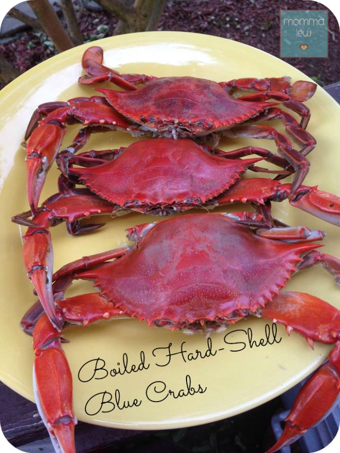 Boiled Hard-Shell Blue Crabs - Recipe