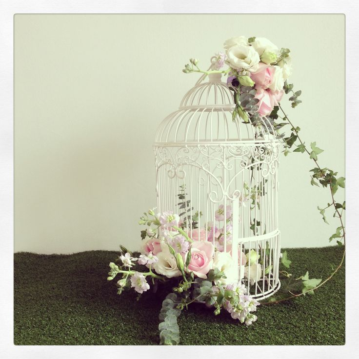 25 unique bird cages decorated ideas on pinterest for Cage d oiseau decorative