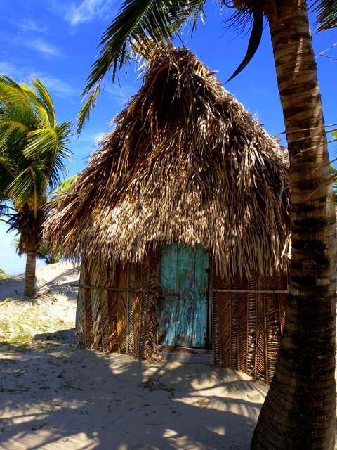 36 Best Garifuna Images On Pinterest Belize Honduras
