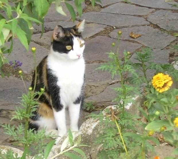 Mia in giardino