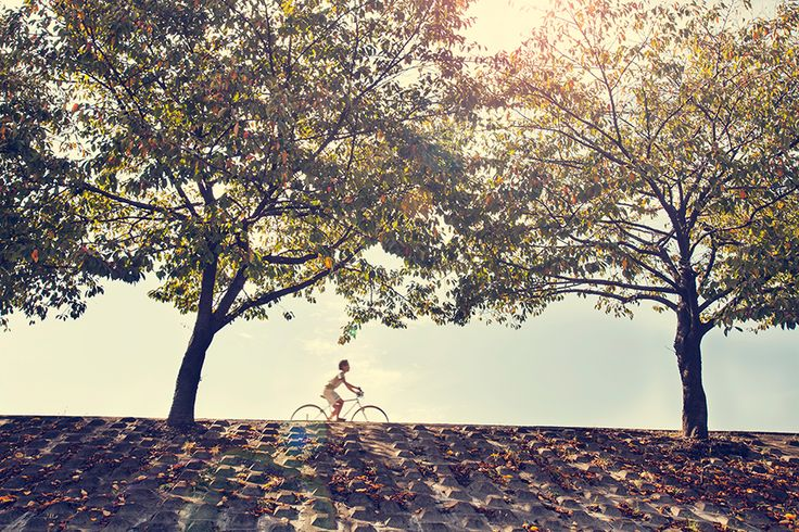 2015.11.06 Free Photo : 이달의 #무료이미지, #배경화면, #윤익이미지, #yooniqimages