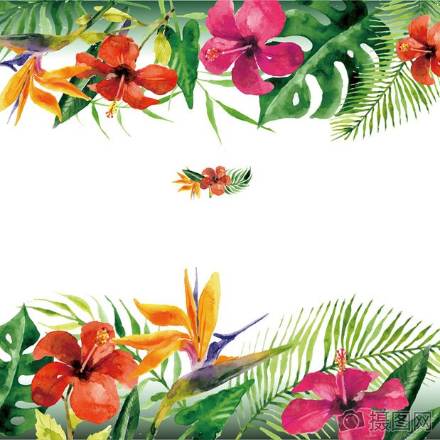 Flower Pattern Flower Vector Flowers Flowers Vector Material Natural Tropical Flowers Pattern Posters Tropic Vector Flowers Flower Painting Flower Illustration