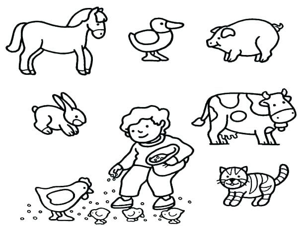 Baby Animal Coloring Pages - Best Coloring Pages For Kids Farm Animal  Coloring Pages, Animal Coloring Books, Baby Coloring Pages