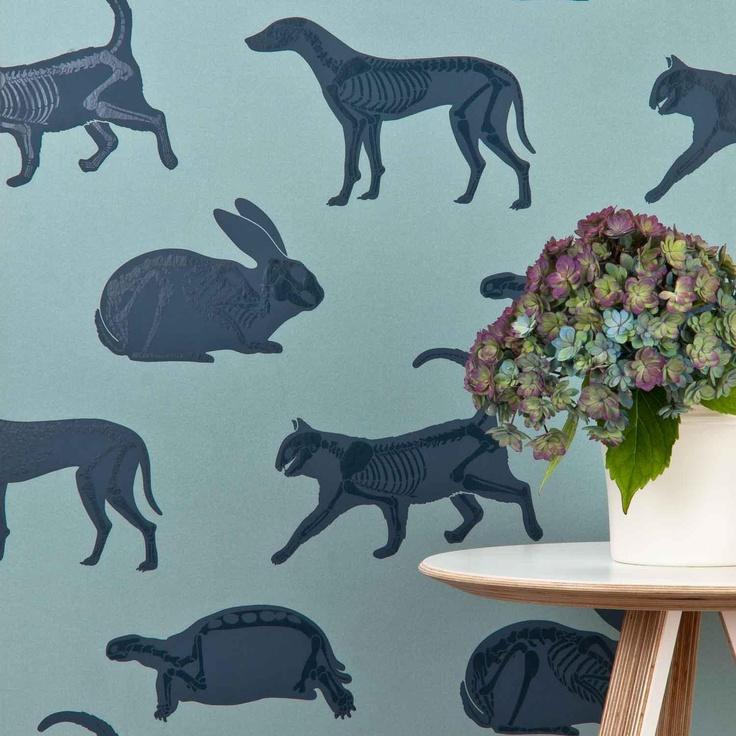 'Animal Magic' Blue children's wallpaper