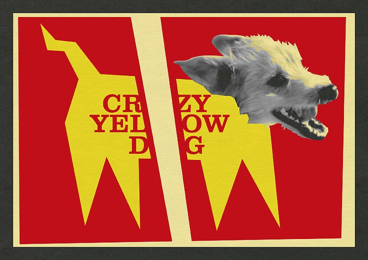 Crazy Yellow Dog