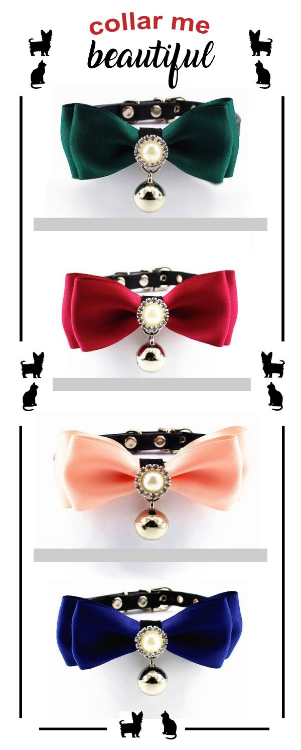 This retro style pet collar decorated with pearls and rhinestones makes your pup or kitty pop at any celebration, wedding or just get together. Explore our entire Dogs + Cats collection of unique hoodies, T-shirts, collars and more. Free shipping in US.