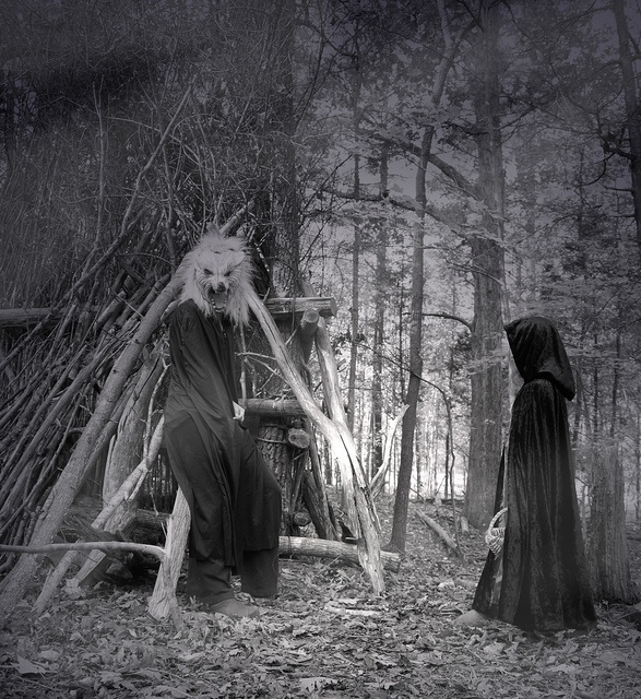 The wolf's lair.: Haunted Wood, Red Riding Hood, Halloween Costumes, Witch, Costumes Wolf, Photo