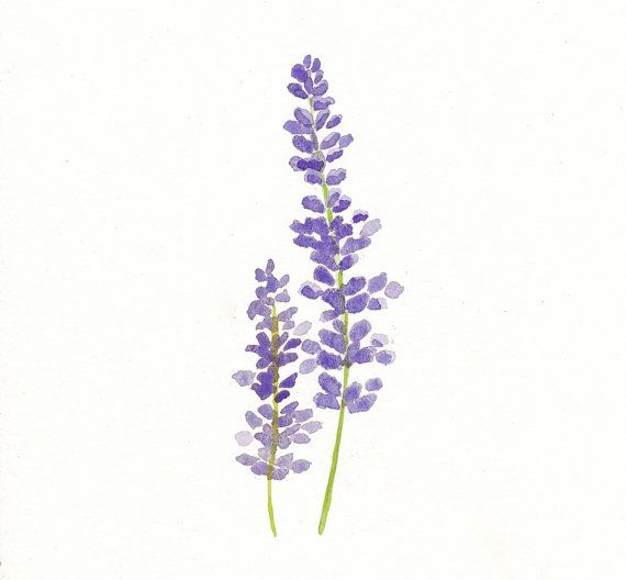 Lavender Original Watercolor Painting por TreeHollowDesigns