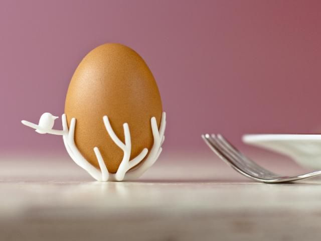 Birds nest eggcup