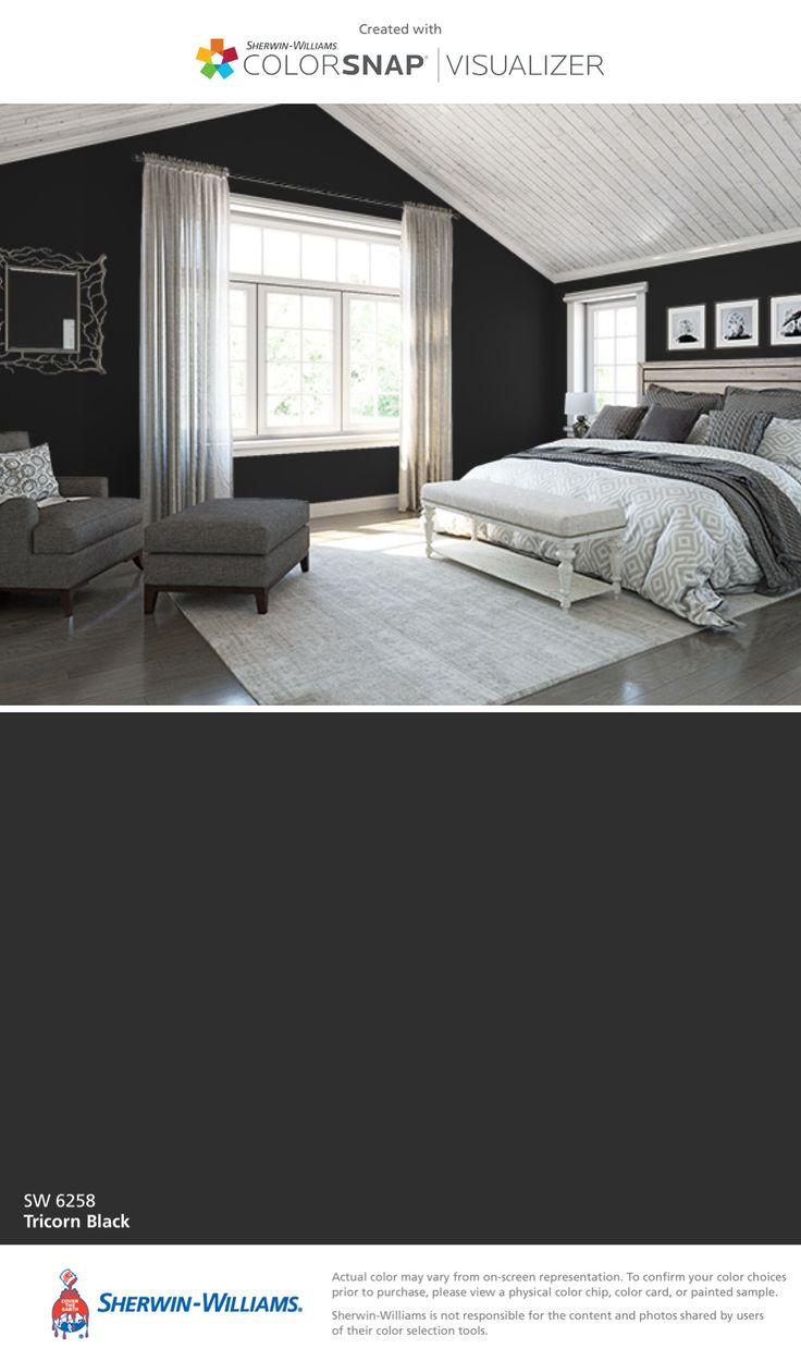 Tricorn Black Sherwin Williams 723 Best Paint Colors Images On Pinterest