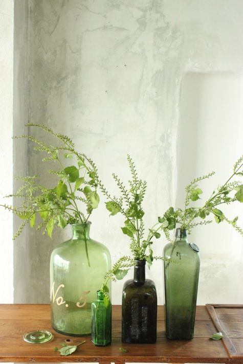 Green greenery in vases