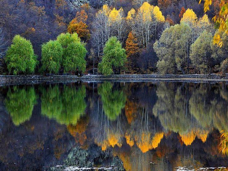 Reflets : Proverbe suédois : La chance ne donne pas, elle ne fait que prêter. La fortuna non dona mai ; presta soltanto.