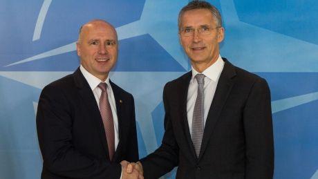Cooperarea Moldovei cu NATO, discutată de Premierul Pavel Filip cu Secretarul General Jens Stoltenberg