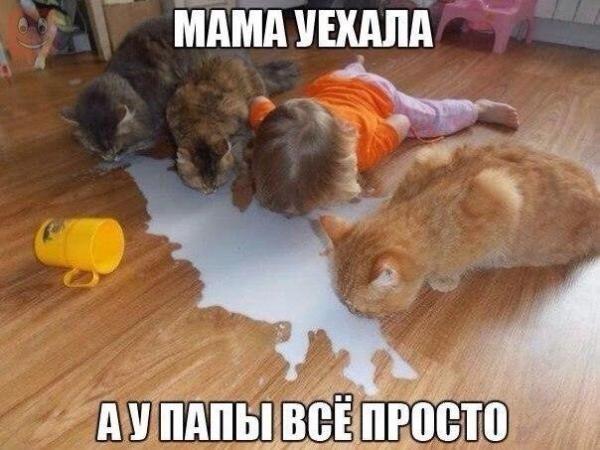 Прикольные картинки с детьми