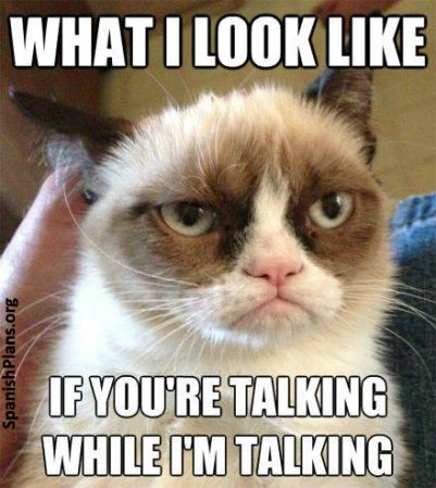 Lots of teacher memes:  What I look like if you're talking while i'm talking Grumpy cat meme