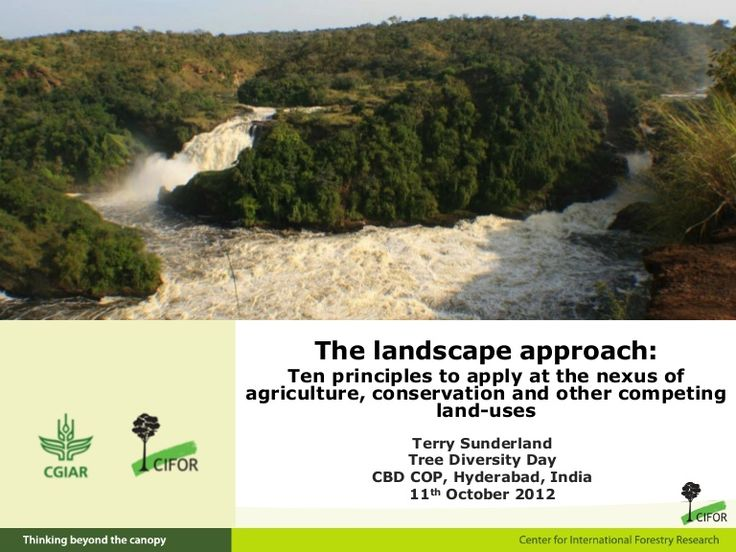 CIFOR SlideShare: Ten principles to apply at the nexus of agriculture, conservation, and other land uses.