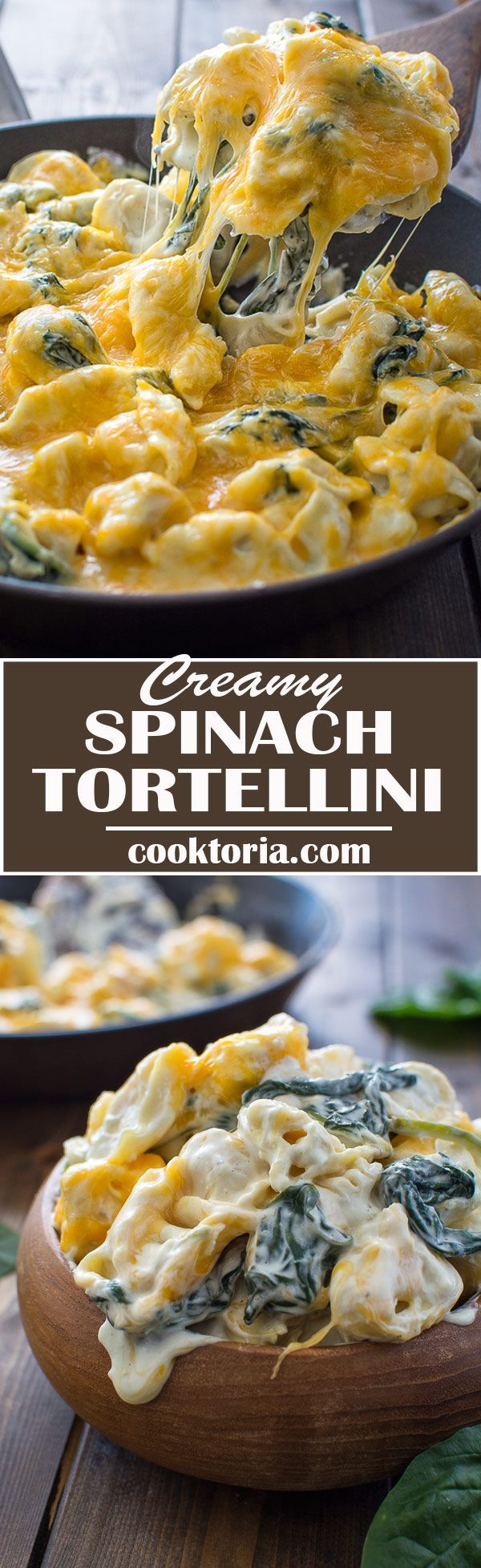 This 5-ingredient Creamy Spinach Tortellini makes a quick and tasty dinner that all the family will love! ❤️ http://COOKTORIA.COM