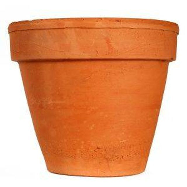 Plant pots usually come in pale greens and earthen browns and can be aesthetically unappealing. Grime and mold can also take hold on a plastic plant pot and make it even less...