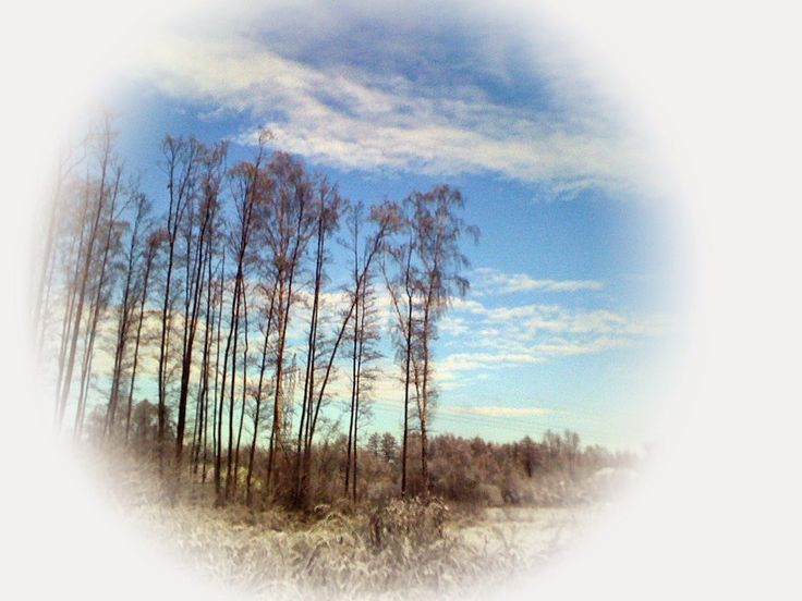 Fotopstryczek : Zimowy widoczek