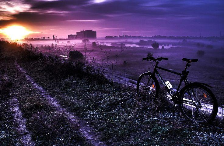 """Money can't buy happiness, but it can buy a bike. That's pretty close.""  Wise!   Lacul Văcărești / 04 noiembrie 2012 / București"