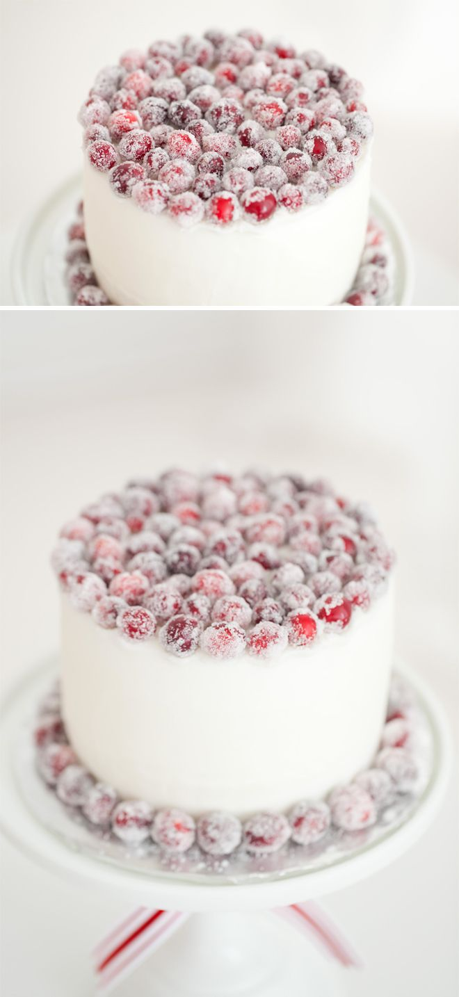 Gorgeous sugared cranberry Christmas cake