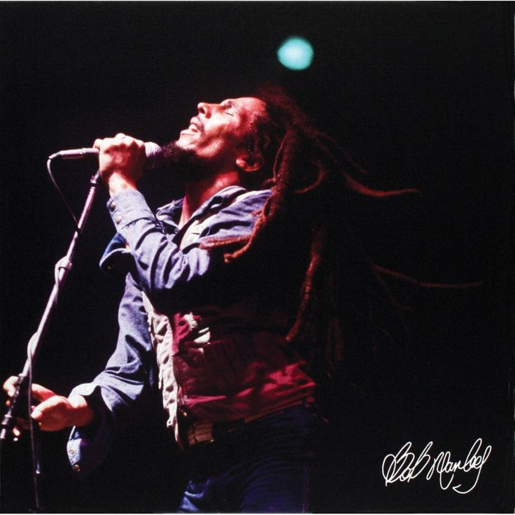 Bob Marley - Concert Small Canvas Print