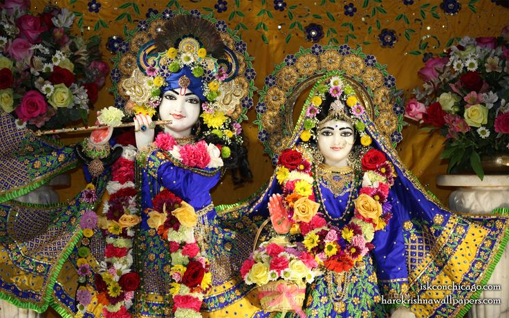 To view KIshore Kishori Close Up Wallpaper of ISKCON Chicago in difference sizes visit - http://harekrishnawallpapers.com/sri-sri-kishore-kishori-close-up-iskcon-chicago-wallpaper-005/