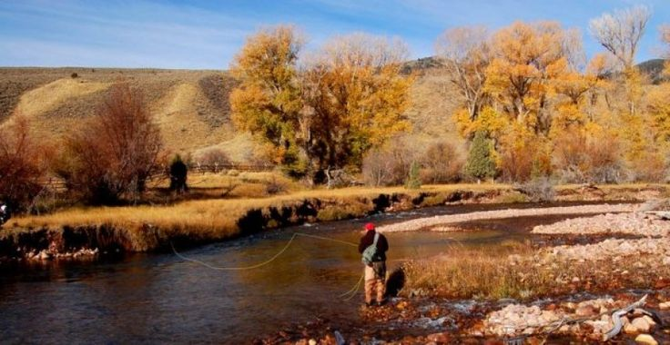 92 best images about fly fishing in utah on pinterest for Best fishing in utah