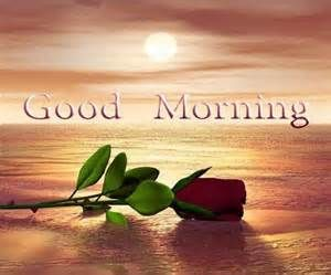 Beautiful Wallpapers Of Good Morning Hearts Roses   Yahoo Canada Image  Search Results