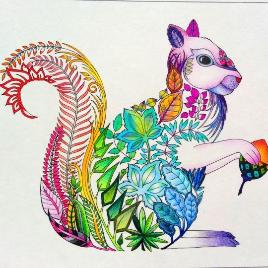 Johanna Basford Colouring Gallery Coloring And Doodles