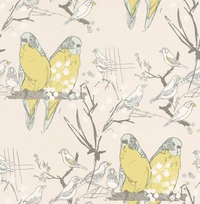 Budgie (AOW-BUDGIE 01) - The Art of Wallpaper Wallpapers - A fun and quirky budgie design in a hand skectched effect. Showing in lime green and grey on an off white background - another colour way is available. Please request a sample for true colour match.