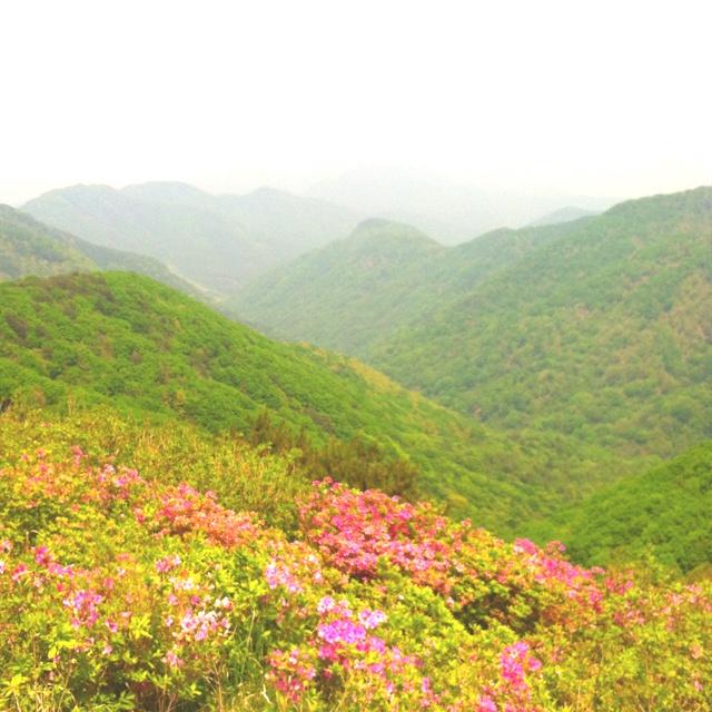 Korea's Mountain