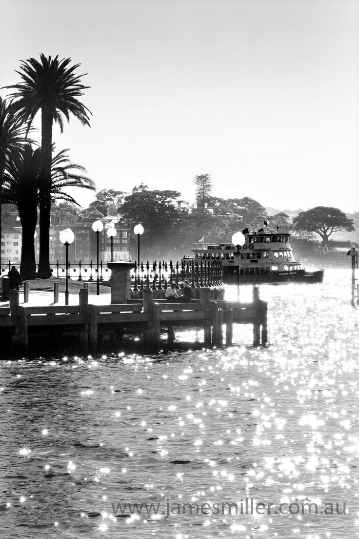 sparkling sun on Sydney's glorious harbour